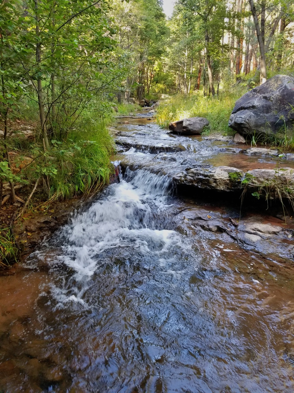 Horton Creek