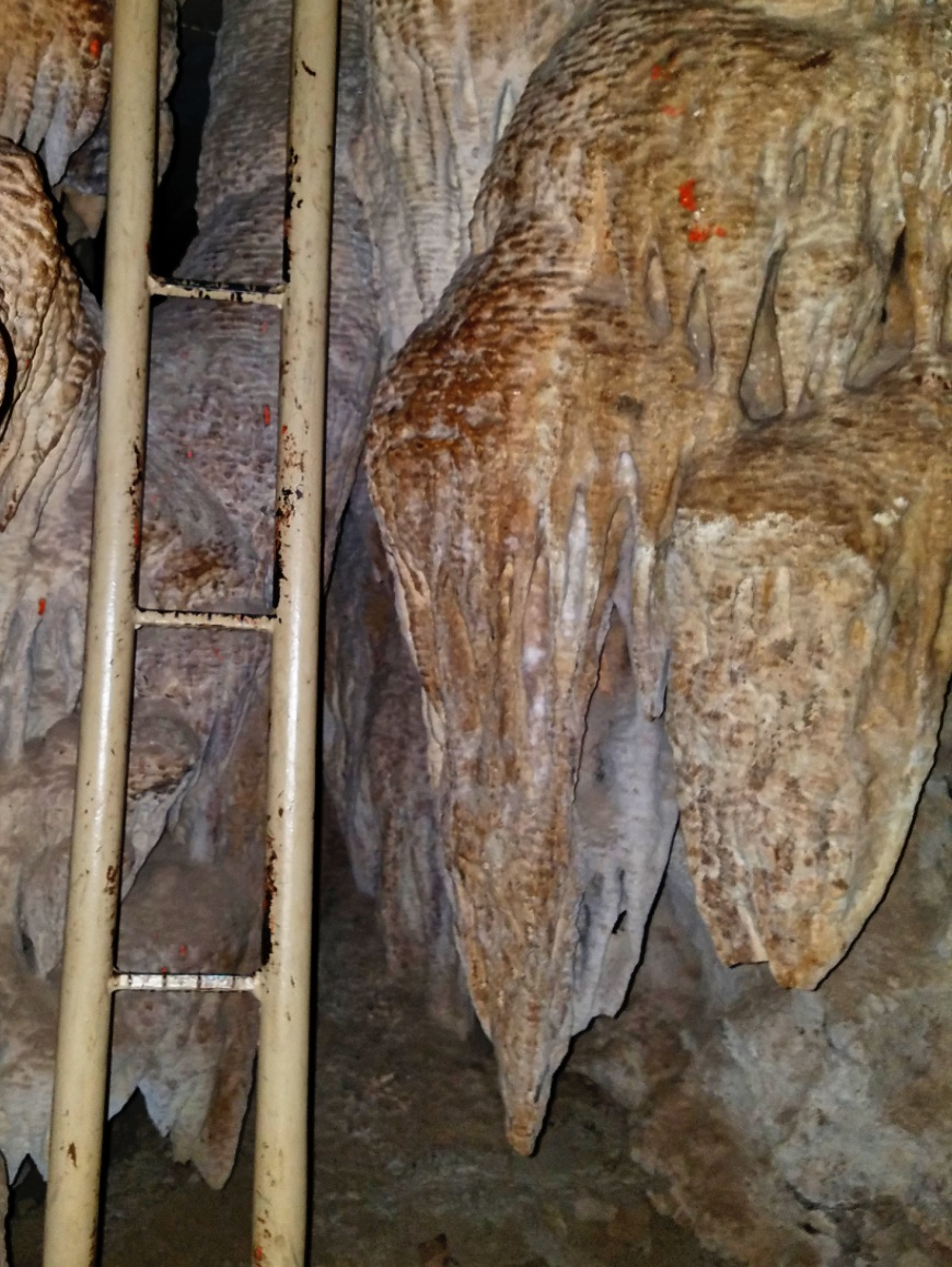 Narrow ladders amongst stallagmites and stallagtites in Collosal Cave