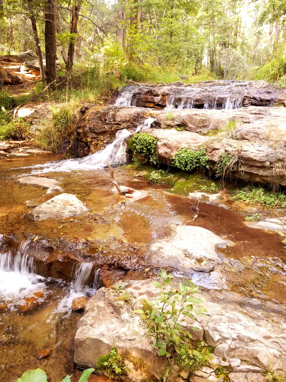 Horton Creek waterfalls